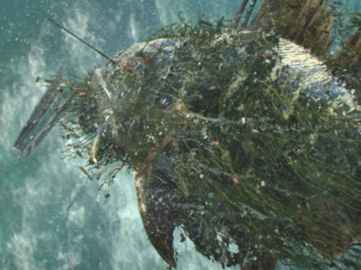 ERA provides DR Infrastructure for VFX house Jellyfish Pictures